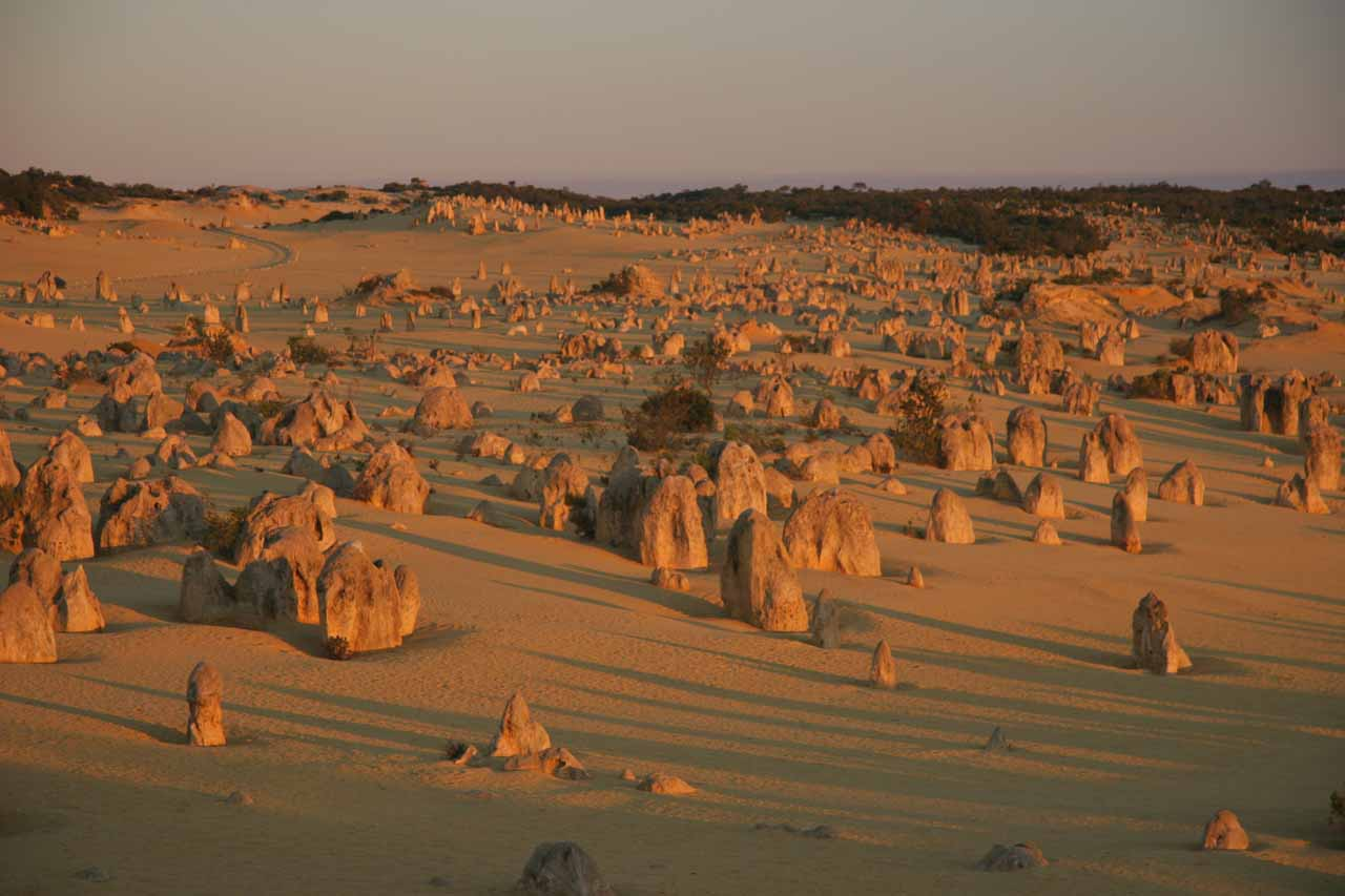 About 2 hours north of Perth (maybe 2.5 hours north of Jarrahdale) was the Pinnacles near the town of Cervantes