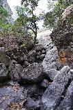 Pinnacles_NP_584_02232020 - At the bottom of the dry Bear Gulch Falls