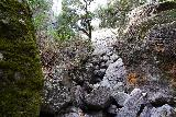Pinnacles_NP_585_02232020 - Broader contextual look at where the Bear Gulch Falls was supposed to be