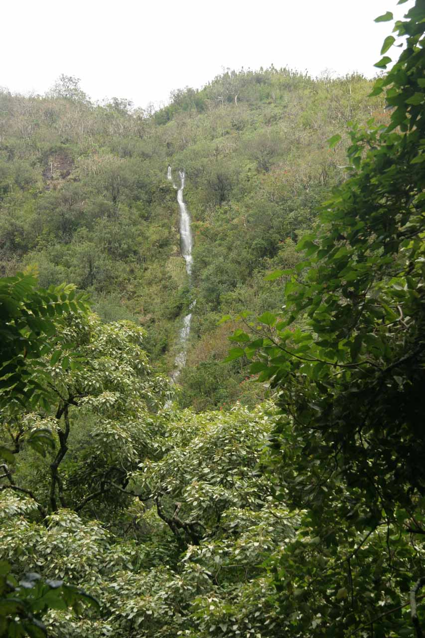A tall waterfall seen just as we left the bamboo forest