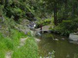 Piroa_Falls_006_11062004 - Julie crossing a bridge on the way to Piroa Falls