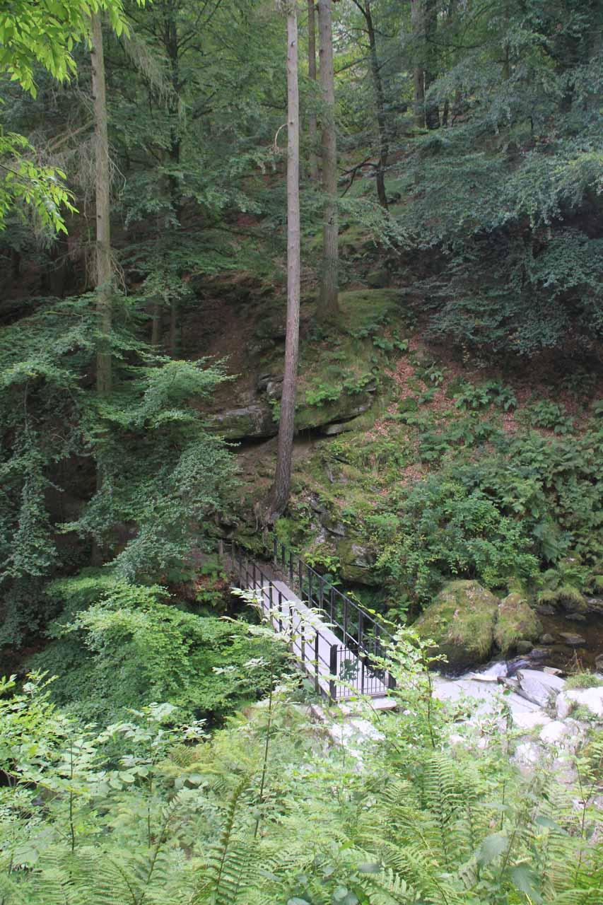 Approaching the footbridge across the Afon Rhaeadr