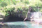 Piula_Cave_Pool_060_11122019 - A local doing a shallower dive into Piula Cave Pool