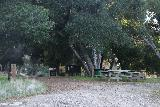 Placerita_Canyon_022_01192019 - Picnic area by the Canyon Trail and Walker Ranch Trailhead access trail junction