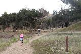 Placerita_Canyon_030_01192019 - Julie and Tahia following the Waterfall Trail, which went through a pretty wide open area alongside Placerita Creek