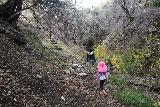 Placerita_Canyon_062_01192019 - Julie and Tahia approaching some steps that were about to climb above Placerita Creek to the topleft