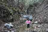 Placerita_Canyon_073_01192019 - Julie and Tahia approaching the Placerita Creek Falls
