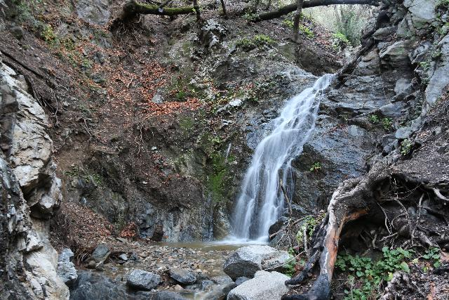 Placerita_Canyon_127_01192019 - Placerita Creek Falls or Los Pinetos Waterfall