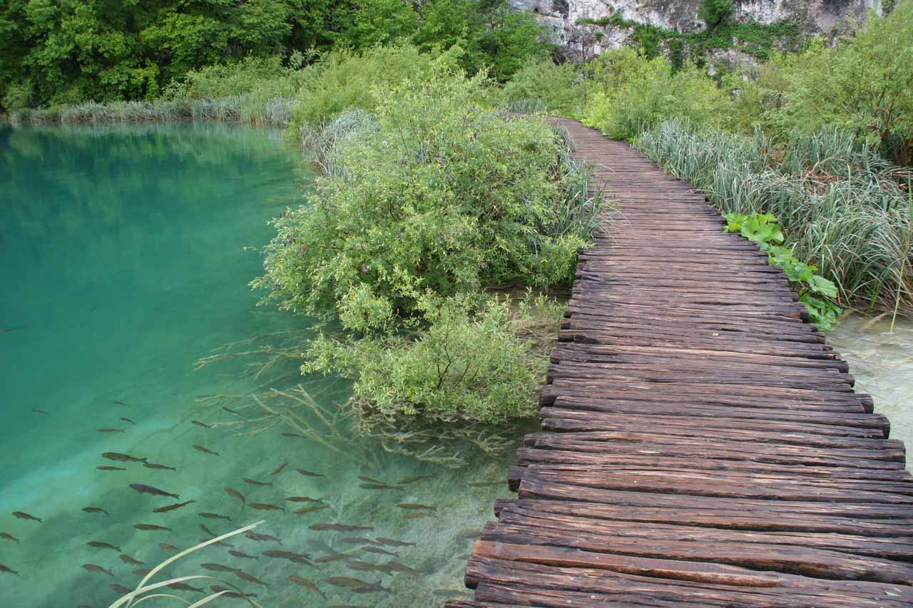 Boardwalk going across one of the Lower Lakes