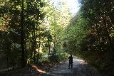 Pomponio_Falls_016_04222019 - Julie descending to the bottom of the Sequoia Flat Campground Road, where there's a concrete ford over Pescadero Creek