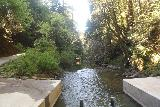 Pomponio_Falls_019_04222019 - Looking downstream from the concrete ford over Pescadero Creek, which was away from the direction of Pomponio Falls, which was upstream from here