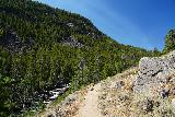 Popo_Agie_Falls_036_08072020 - The Middle Fork Trail follows along the north side of the Middle Popo Agie River for pretty much the entire way