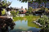 Portland_114_04062021 - Looking across the pond towards the opposite corner of the Lan Su Garden in downtown Portland