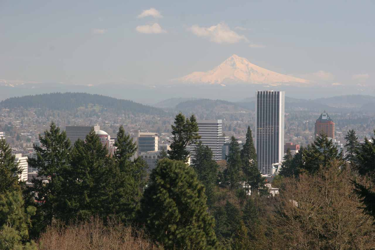 Mt Hood from the Japanese Garden