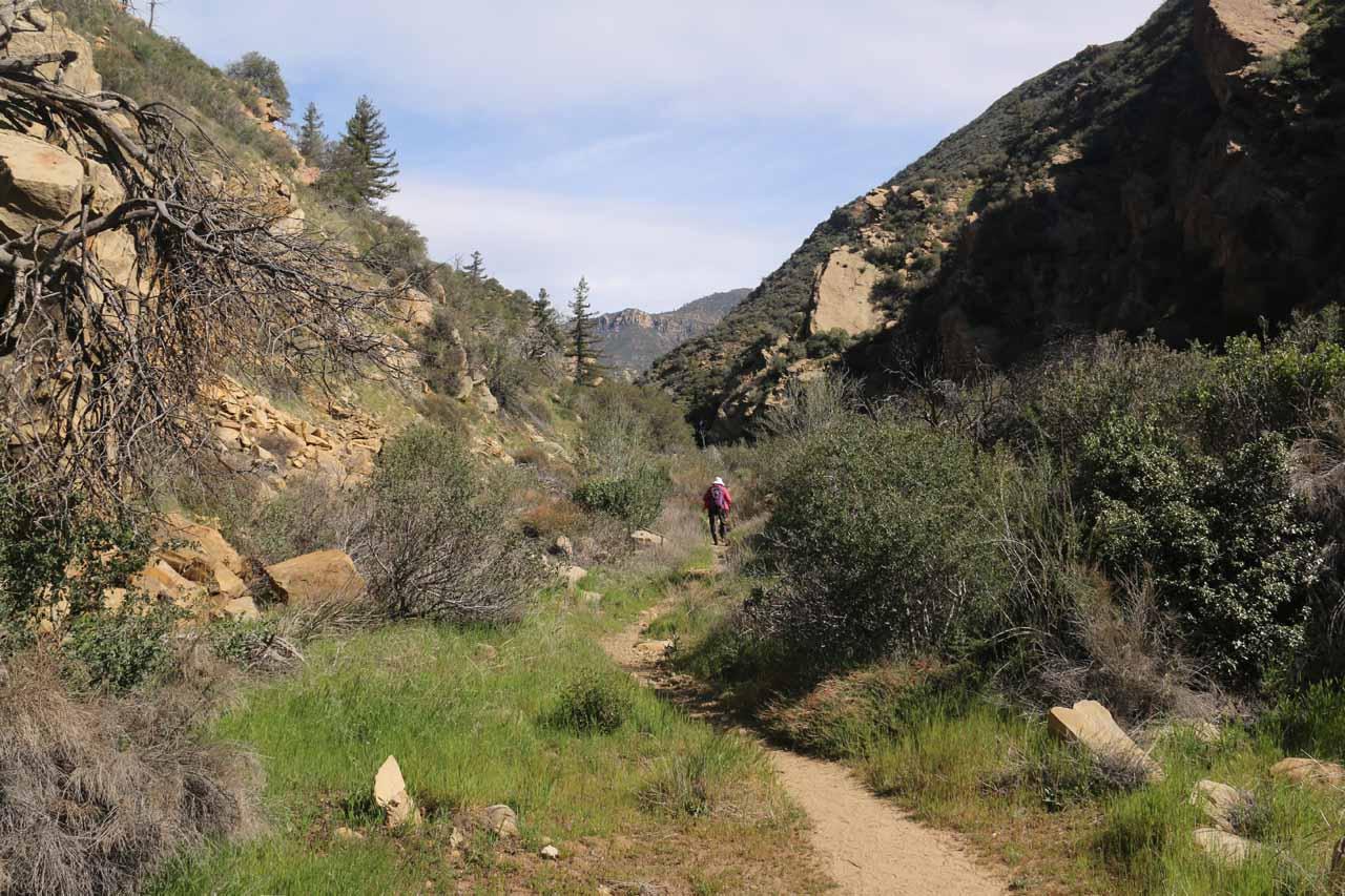 Mom starting on the Portrero John Trail, which was pretty straightforward to follow initially