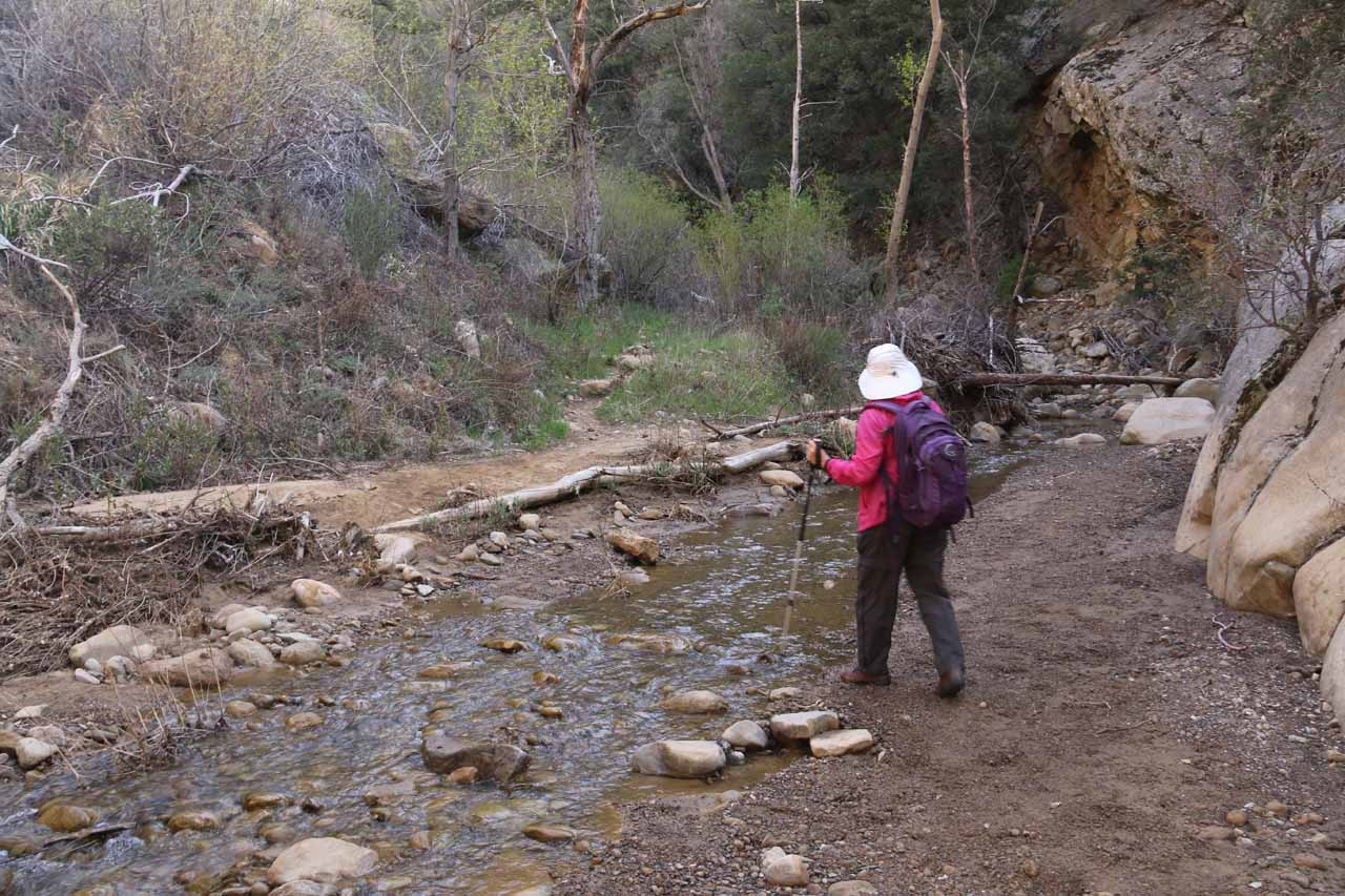 The Portrero John Creek Crossings came quickly and frequently