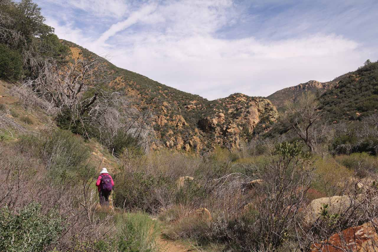 After getting through the initial gorge, the trail then meandered through a pretty open field of brush and trees with mountains and cliffs in the distance