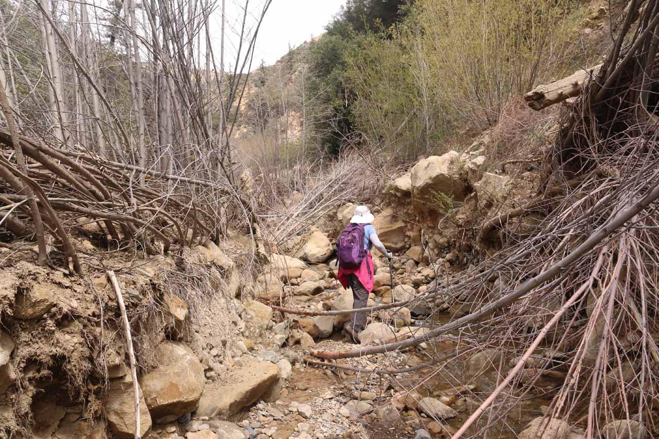 Continuing to negotiate fallen branches and loose rocks on Portrero John Creek