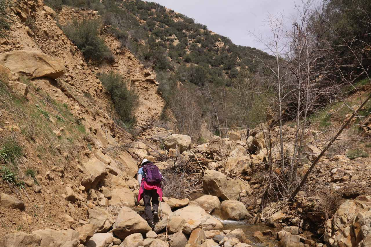 By this point of the creek scramble (probably about an hour beyond Portrero John Camp), we wondered when the payoff will finally come