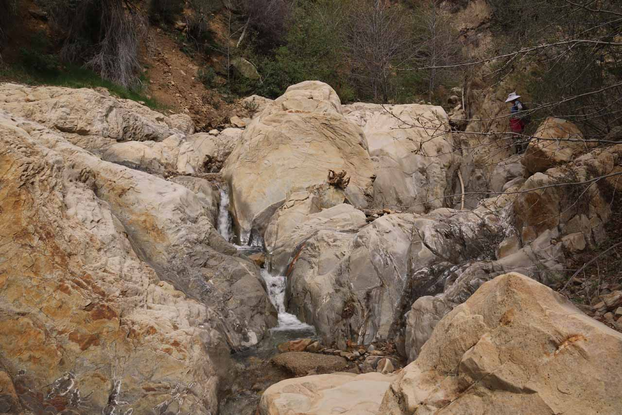 More scrambling obstacles around minor waterfalls on Portrero John Creek