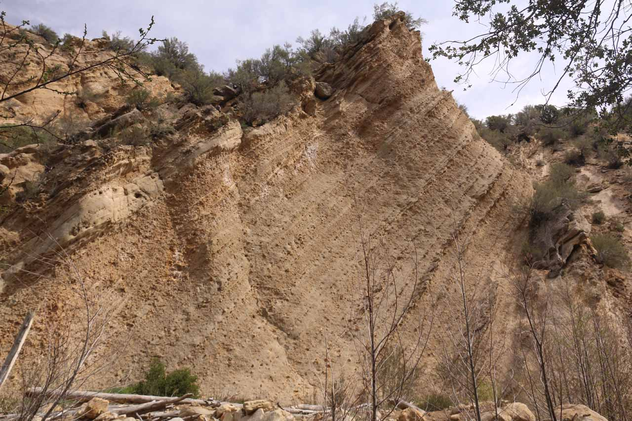 This striated cliff landmark was one of the mental points of interest we kept track of during the creek scramble