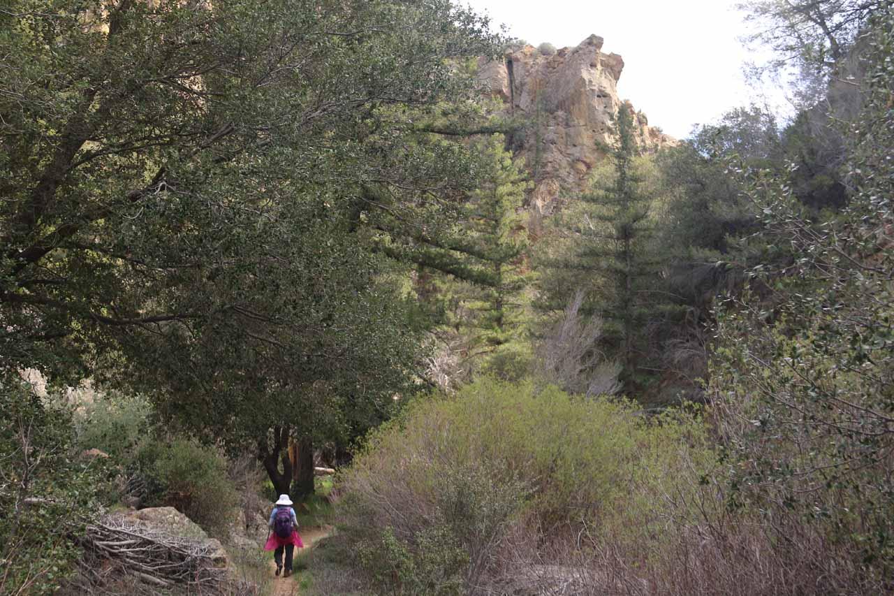 Getting back into the scenic gorge near the Portrero John Trailhead