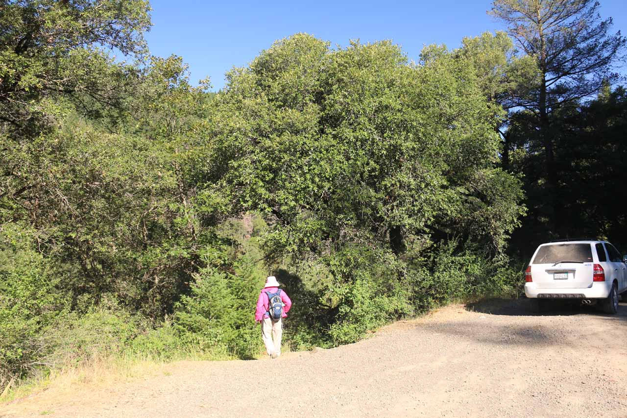 Mom finding and taking the trail-of-use from the pullout down to the base of Potem Falls