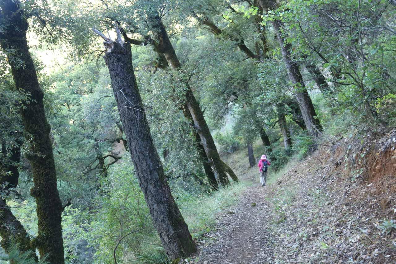 The descending trail was pretty straightforward to follow