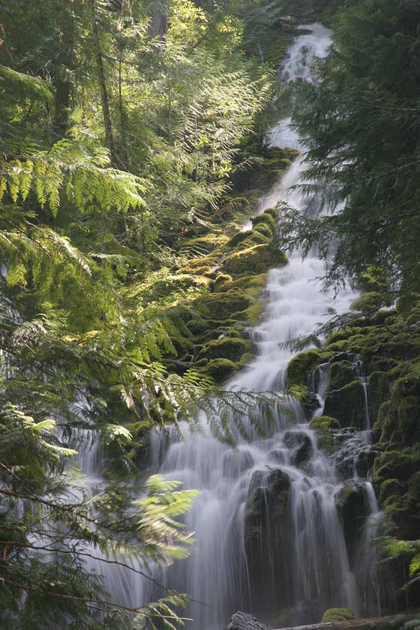 The hard-to-photograph Upper Falls (or Upper Proxy Falls)