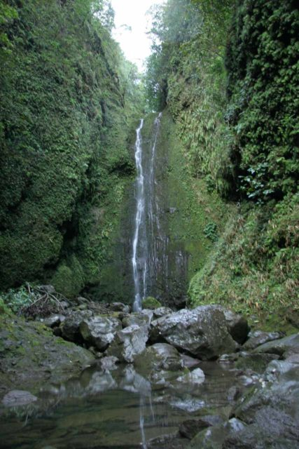 Punalau_Falls_004_02232007 - Punalau Falls