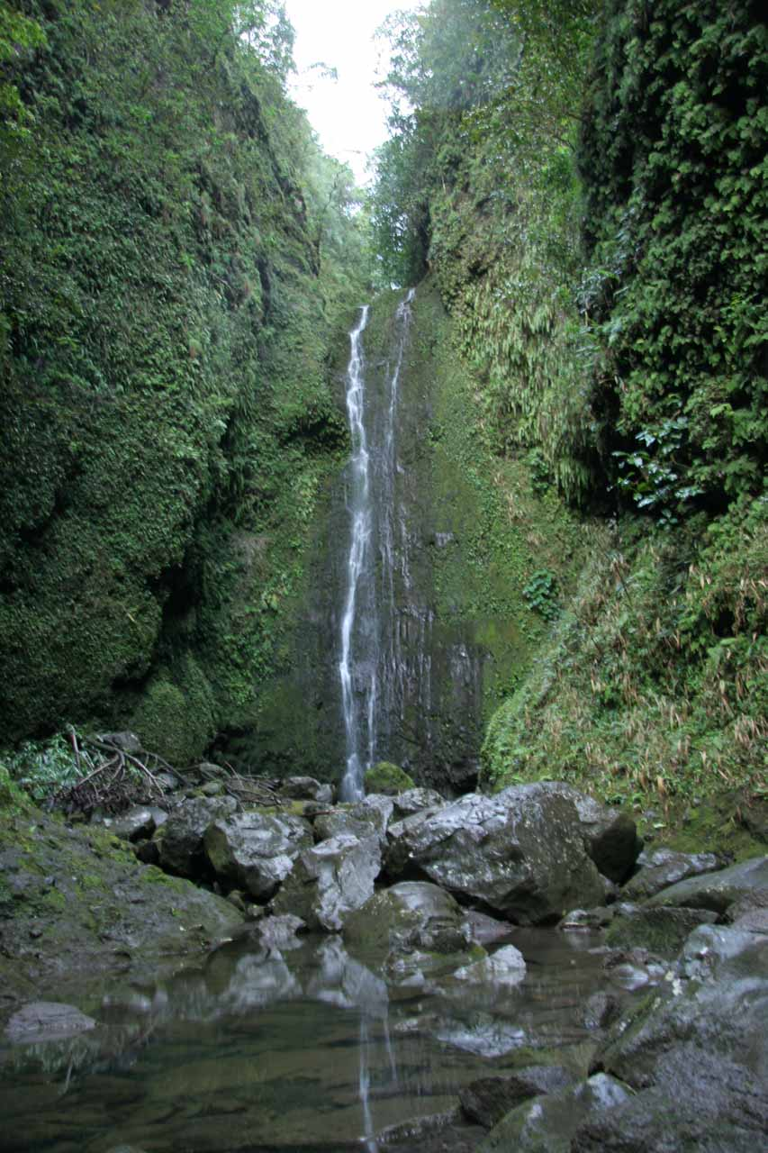 Punalau Falls - one of the Hana Highway Waterfalls most likely affected by diversion ditches for sugar cane