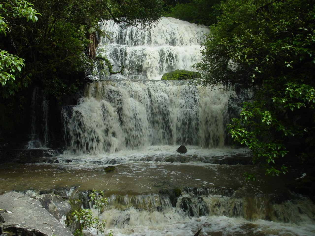 Our first look at Purakaunui Falls from the main viewing deck in December 2004