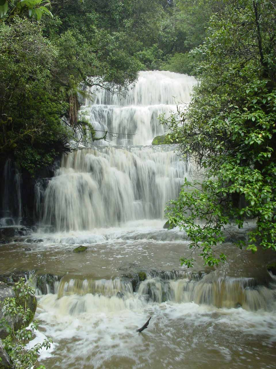 The state of Purakaunui Falls during our early December 2004 visit was actually a little rain swollen