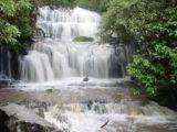 Purakaunui_Falls_025_12012004 - Purakaunui Falls