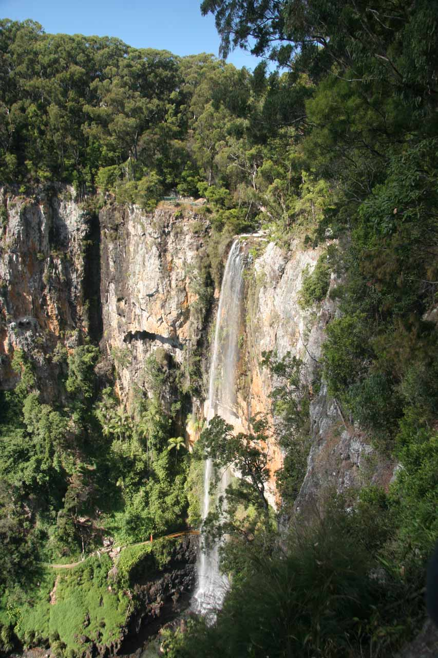 Purling Brook Falls in full from the cliffs