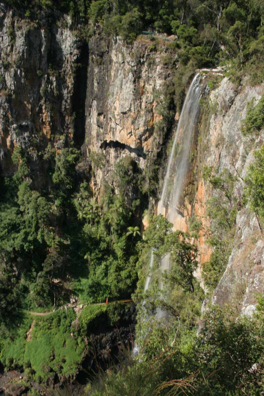 Looking down at Purling Brook Falls from the walking track leading to its base