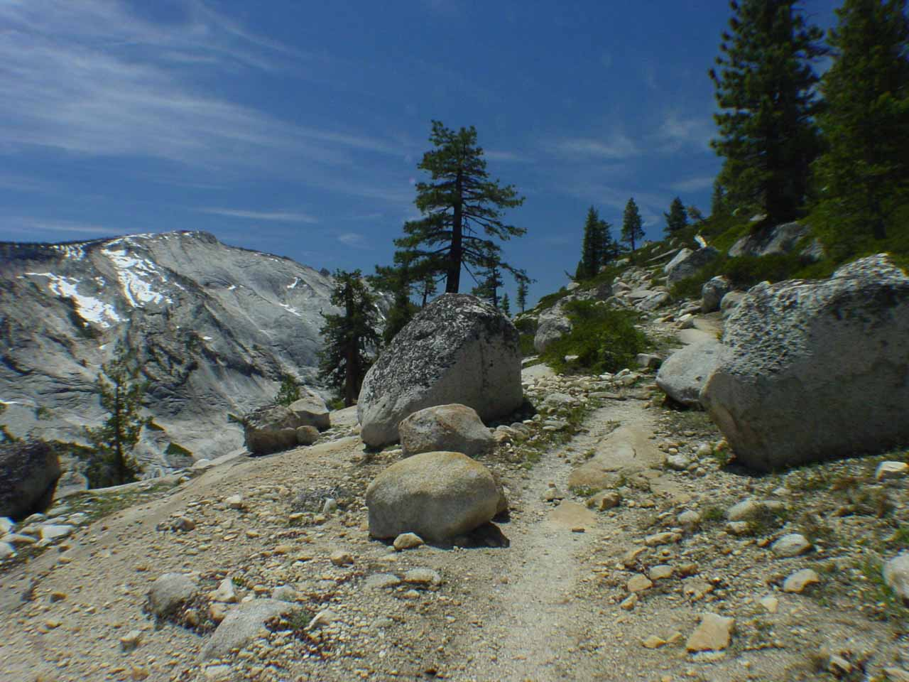 The trail narrowed and started to climb briefly as it started to get more exposed to the sun