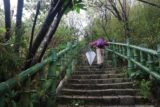 Qingshan_Waterfall_007_11032016 - Mom making her way up the steps as we left the food stand at the trailhead