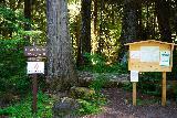 Quartz_Creek_Trailhead_003_06242021 - More trailhead signage for the Upper Lewis River Falls from the Quartz Creek Trailhead
