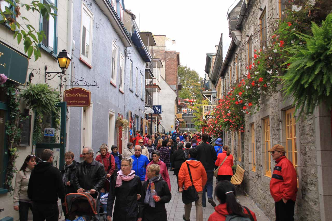 The lower district of Old Quebec by Rue Champlain was very charming and very popular as you can see from all the foot traffic