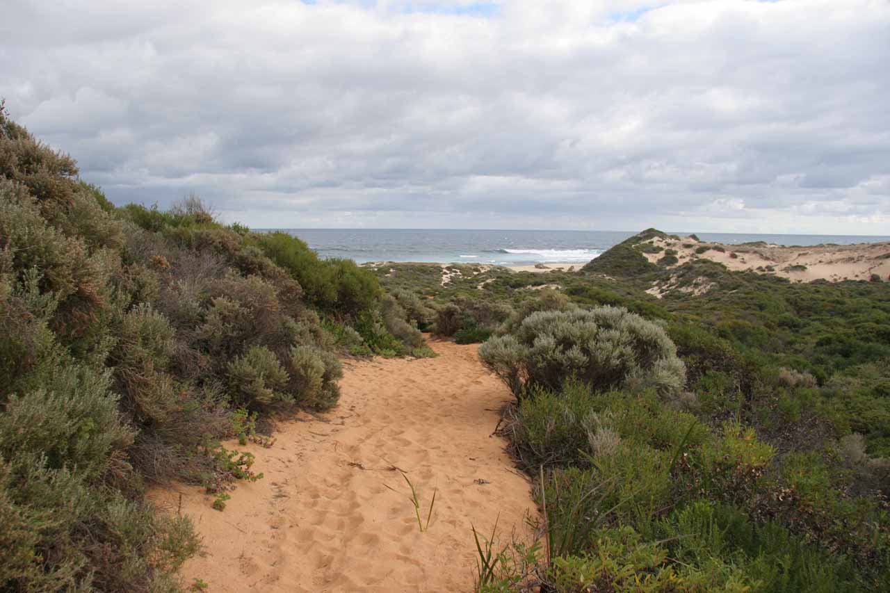 Looking back out towards the sandy path and the ocean from Quinninup Falls