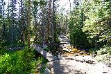 RMNP_019_07272020 - Traversing some temporary stream along the Glacier Gorge Trail towards Alberta Falls