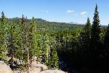 RMNP_060_07272020 - Looking back across the forest floor from the top of Alberta Falls