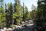 RMNP_083_07272020 - Returning along the Glacier Gorge Trail as I had my fill of Alberta Falls and was now pursuing Bear Lake
