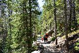 RMNP_103_07272020 - The number of people on the trails near Bear Lake were a lot more here than they were around Alberta Falls. I suspected this was the case due to the fact that most people got off the shuttle at the Bear Lake stop