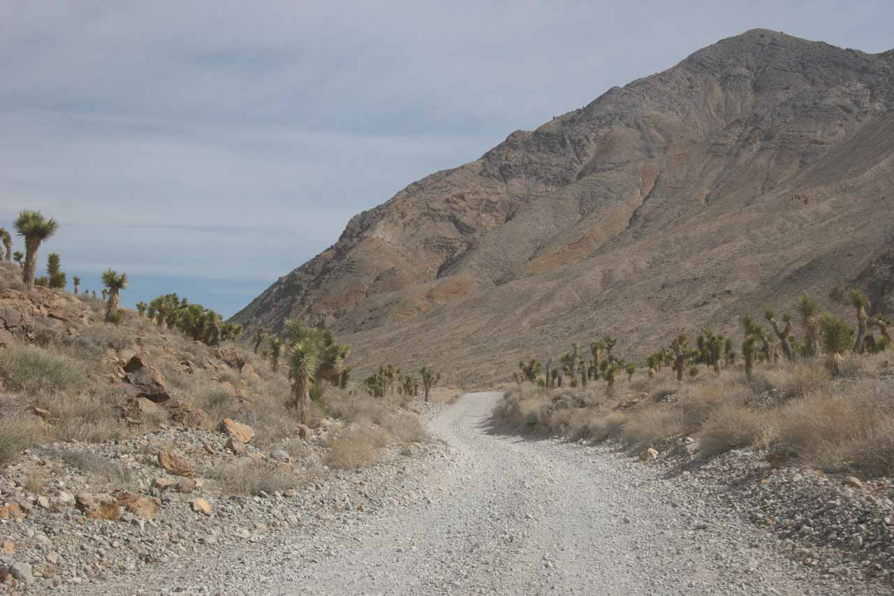 On the rough unpaved road leaving the Racetrack and getting us back to the main road