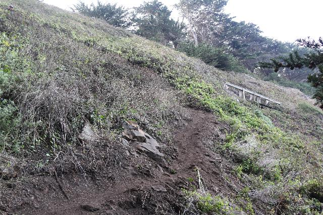 Ragged_Point_061_11172018 - Looking up at old trail infrastructure that was now no longer in use since the current 'trail' bypasses it. I'd imagine it's a constant tug-of-war between human access and Nature reclaiming it
