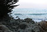 Ragged_Point_078_11172018