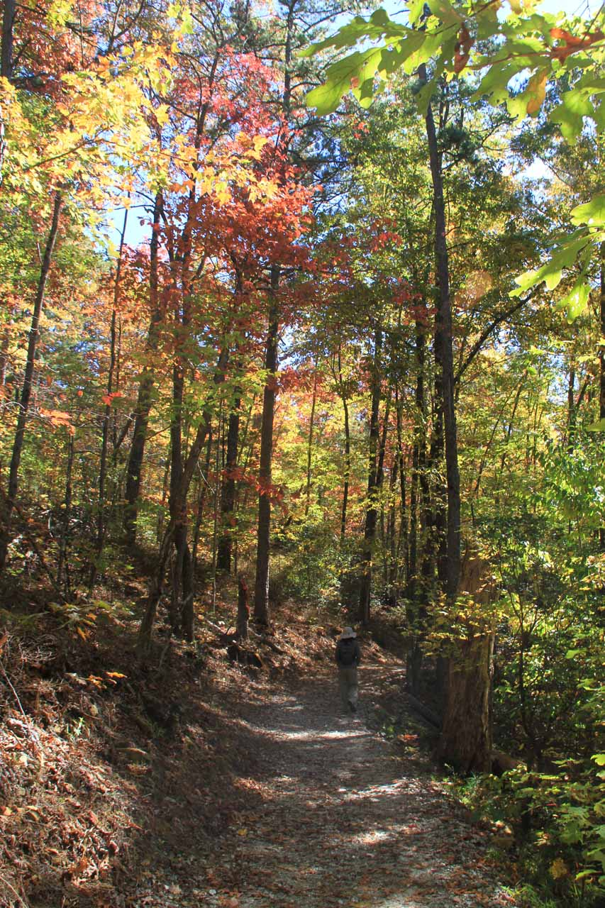 Beautiful Fall colors along the trail