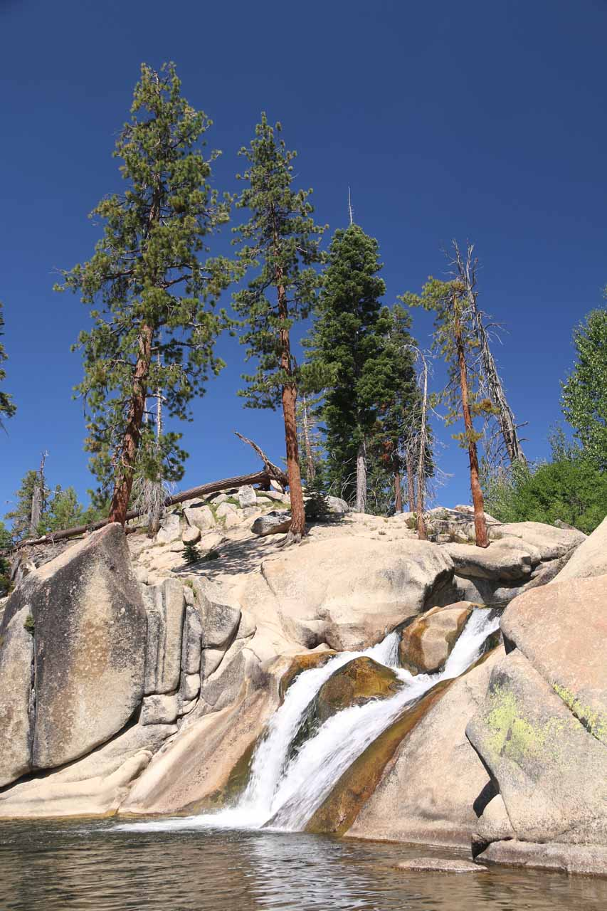 Portrait view of Lower Falls and surrounding trees at an angle